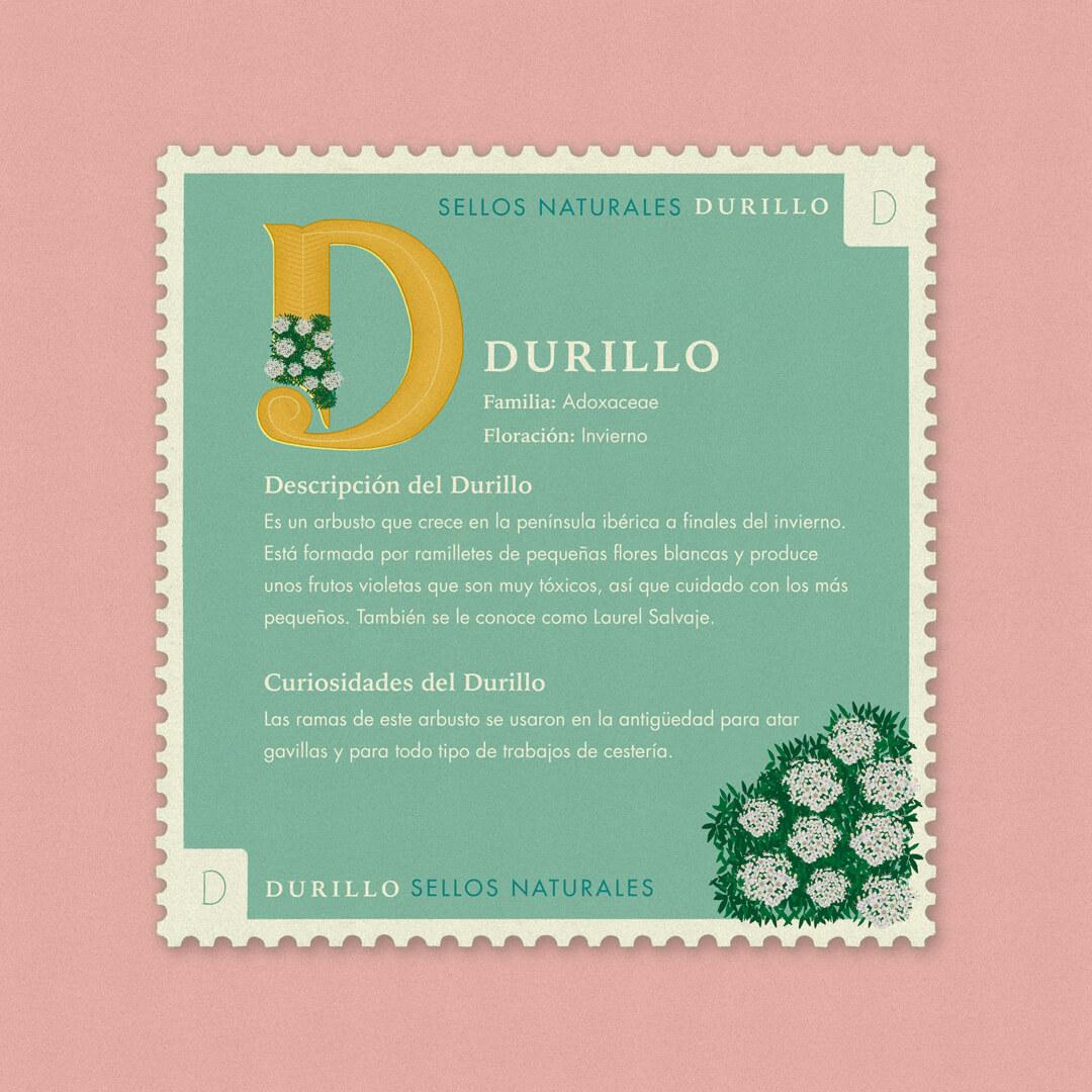 D-Durillo-description-sellos-naturales-ibelis-garzon