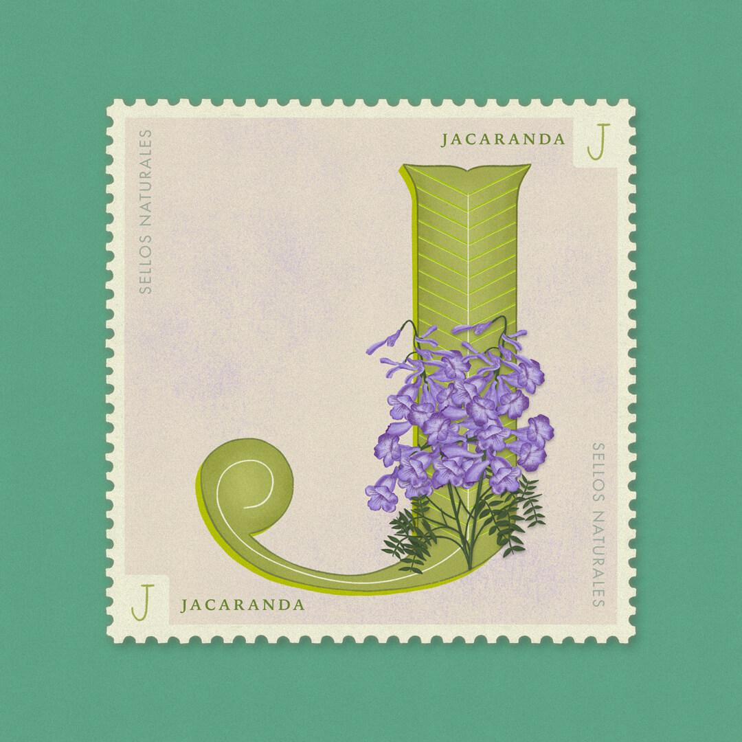 J-jacaranda-sellos-naturales-ibelis-garzon