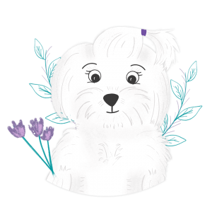 puppy-ballet-illustration-pet-portrait